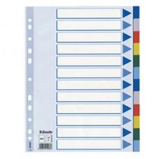Separatore - 12 tasti colorati - PPL - A4 - multicolore - Esselte
