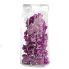 Buste Crystal - trasparenti - 10 x 30 + 6cm - con fondo quadro - PNP - conf. 100 buste