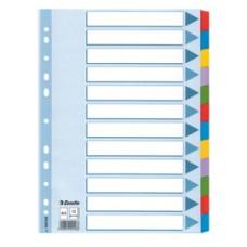 Intercalare Mylar -12 tasti colorati - A4- Esselte