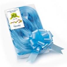 Nastri strip 6800 - in polipropilene - azzurro 06 - per fiocco autocomponibile - 31mm - diametro 13cm - Brizzolari