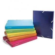 Cartella con elastico Colorosa - PPL - colori assortiti - diametro 30 mm - Ri.Plast